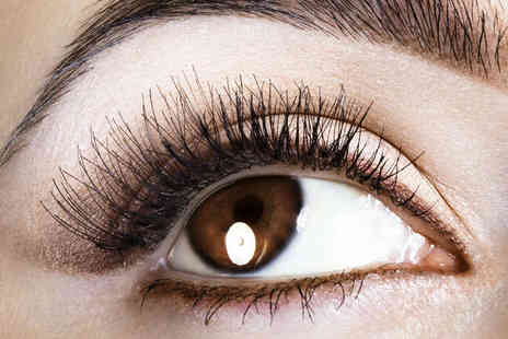 Flawless Finish Beauty - Full Set of Individual  Siberian Mink Eyelash Extensions with Eyebrow Tint  - Save 59%
