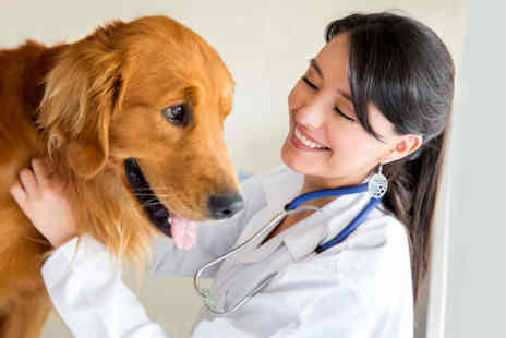 Course Giant - Three  veterinary assistant course - Save 87%