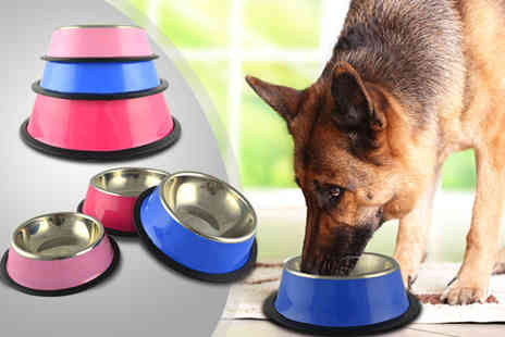 Once Upon a Company - Small stainless steel dog bowl - Save 75%