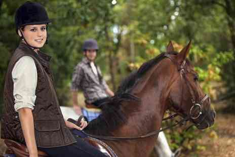 Hundleby Riding Centre - Riding Lesson or Hacking - Save 60%