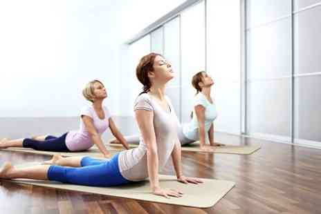 Your Universe Yoga - Six Classes of Zen Yoga - Save 63%