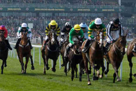 Aintree Racecourse - Two General Admission Tickets to Summer Nights Racing - Save 50%