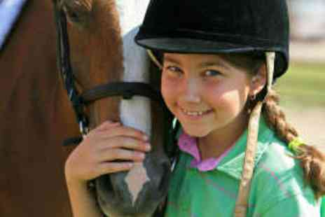 Longacres Riding School - Childrens Group Beginners Pony Riding Lesson - Save 53%
