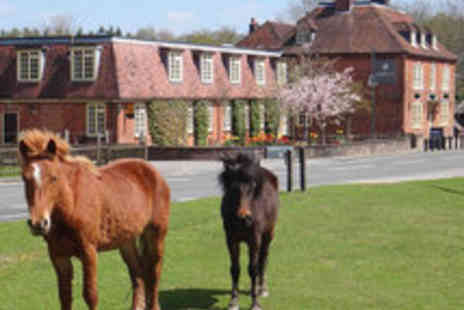 The Bell Inn Hotel - Hampshire Nature Retreat for Two with Champagne Cream Tea - Save 57%