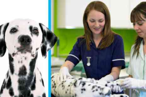 Course Giant - Online veterinary assistant course - Save 87%
