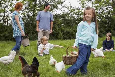 Lower Drayton Farm - Entry For Two or Family - Save 44%