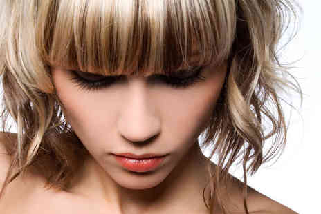The Velvet Rooms - Haircut and Finish with Treatment or Half Head Highlights - Save 55%