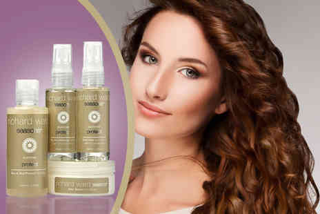 Richard Ward Couture Hair - Four piece summer hair protect kit - Save 52%