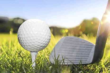 UK Golf Academy - Two Golf Lessons With PGA Pro - Save 61%