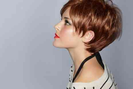 Cissors Palace - Half Highlights or Full Colour With Cut and Blow Dry  - Save 50%