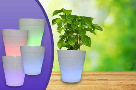 Once Upon a Company - Solar powered LED flower pot - Save 60%