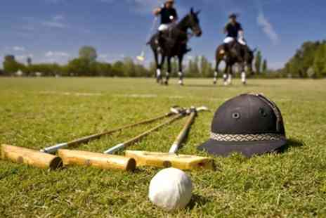 Vale of York Polo club - Two Hour Lesson For One  - Save 63%
