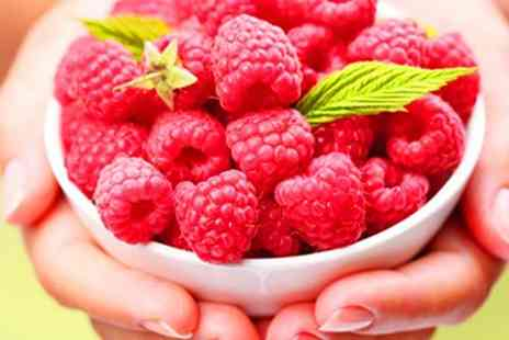 Skin Research - Raspberry Ketone Supplements - Save 86%
