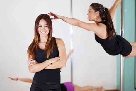 Sky High Studio MK - Five Fitness or Pole Fitness Classes - Save 67%