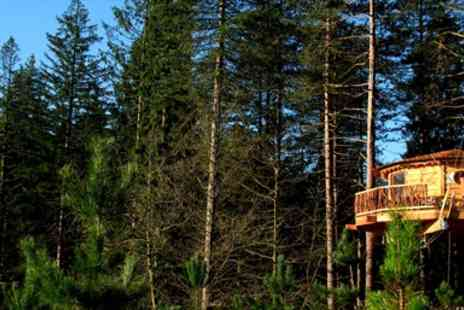 Cabanes als arbres -  Overnight in Spanish Treehouse Stay with Breakfast  - Save 43%