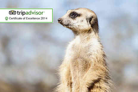 Bridlington Animal Park - Park keeper experience for 2 people - Save 62%