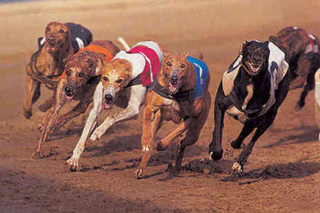 Doncaster Greyhound Stadium - Dog Racing with Programme Hot Dog Chips and a Drink Each for Four  - Save 68%