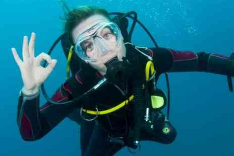 Oyster Luxury Travel & Diving - PADI Discover Scuba Diving Experience  - Save 53%