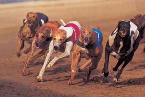 Sunderland Dogs -  Race Entry With Food, Drinks and Disco - Save 58%