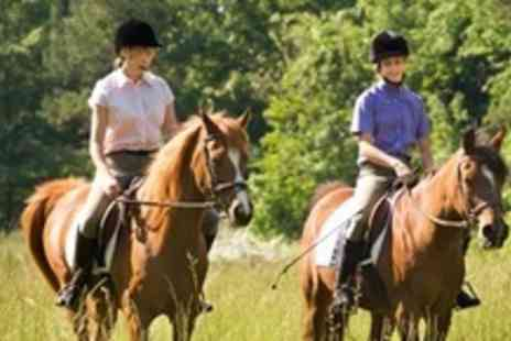 Kailzie Equestrian Centre - Four Hour Horse Riding Session Including Trek or Hack - Save 60%