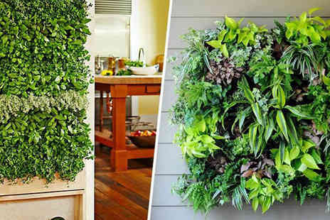 SVB Trading - Set of Two Vertical Indoor Wall Planters - Save 48%