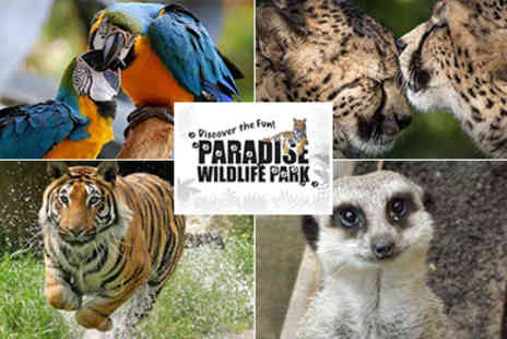 Paradise WildLife Park - Paradise Wildlife Park to Great Family Fun for all the family - Save 50%