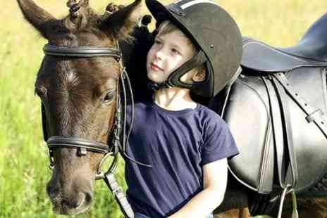Fordbank Equi Centre - Pony Party For up to Eight Kids  - Save 51%