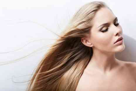 Da Vinci - Half head of highlights with a wash, cut & blow dry plus treatment - Save 50%