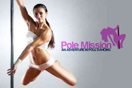 Pole Mission - Four Pole Fitness Classes for £10, £28 Value - Save 64%
