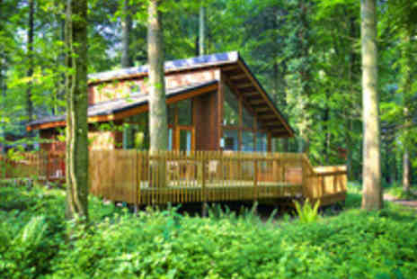 Forest Holidays - Three Night Weekend Escape in the Forest of Dean - Save 40%