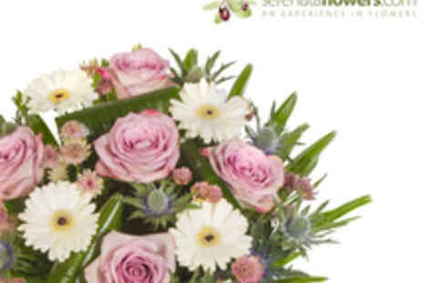 Serenata Flowers - A Choice of Three Flower Bouquets with Delivery Included - Save 52%