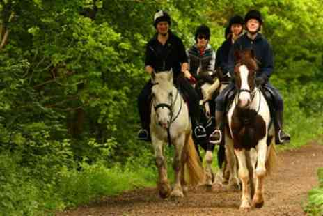 Trent Park Equestrian Centre - Horse Riding With Hot Drink Plus Cake  - Save 61%
