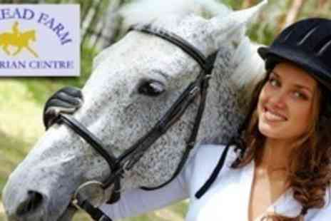 Pinkmead Farm Equestrian Centre - One Hour of Horse Riding With Hat Hire For One - Save 51%