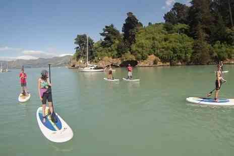 Green Dragon Activities  - 90 Minute Paddleboarding Lesson - Save 58%
