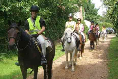 Ellenwhorne Equestrian Centre -  Three Hour horse  riding Experience - Save 56%