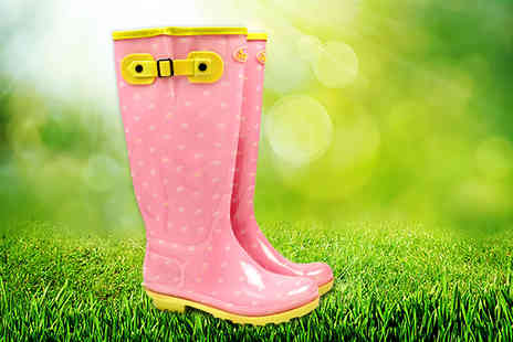 Briers - Pair of classic pink and yellow daisy dot wellies - Save 50%