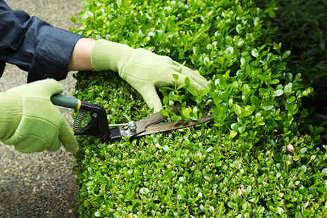 Mowing n Hoeing - Garden maintenance - Save 55%