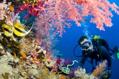 Scuba & Outdoor Pursuits - £19 for a three-hour scuba diving experience worth £49 - Save 61%