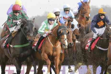 Uttoxeter Racecourse - Entry to Uttoxeter Racecourse Premier Enclosure  For Two  - Save 50%