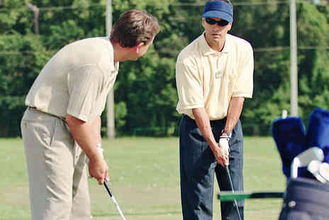 Impact Zone Golf Academy - 30 Minute Golf Lesson - Save 55%