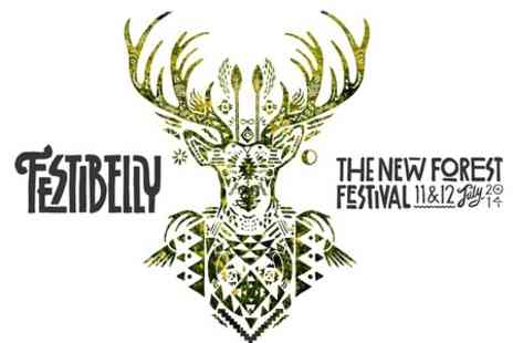 Festibelly - Entry to Festibelly Music and Arts Festival For Adult - Save 50%