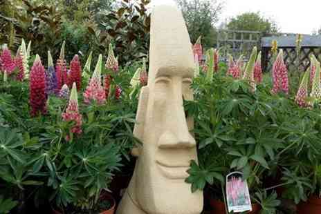 Carpenders Park Garden Centre -  £40 Spend on Plant Products  - Save 50%