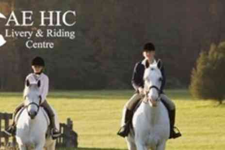 Cae Hic Livery- Two Hours of Riding Lessons - Save 70%