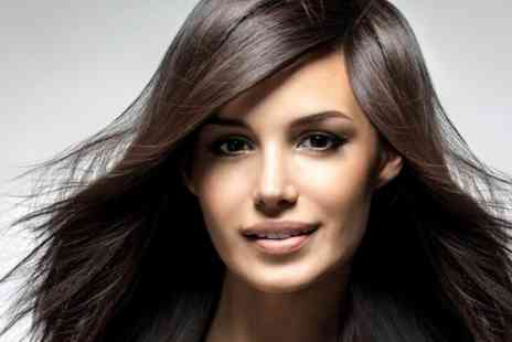 The Elegance Hair Spa - Cut and Blow Dry - Save 39%