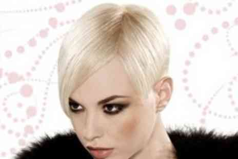 Ozzie Rizzo - Cut With Deep Conditioning Treatment Plus Blow Dry - Save 65%
