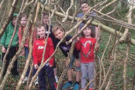 Activity Camps - Childrens Activity Camp - Save 52%