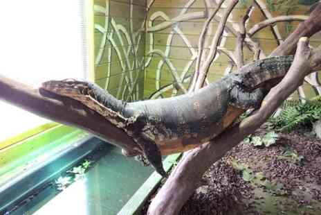 Wild Encounters - Entry to Wild Encounters Reptile Experience For Two - Save 50%
