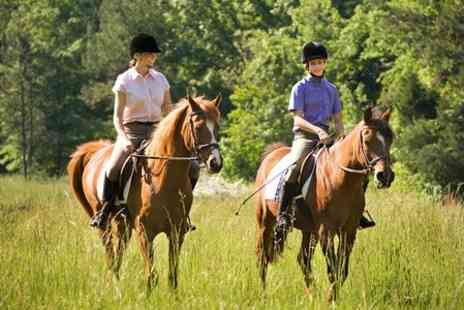 Halsall Riding -  90 Minute Hack For One  - Save 50%