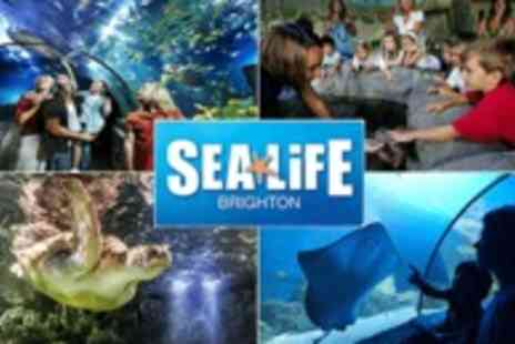 Merlin Entertainments - Discover the amazing creatures of the underwater world - Save 50%