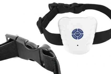 Gift hampers by post - Dog Bark Stop Collar - Save 50%